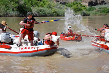 Family River Rafting: FULL CIRCLE WITH HOLIDAY RIVER EXPEDITIONS | River Currents Rafting Blog