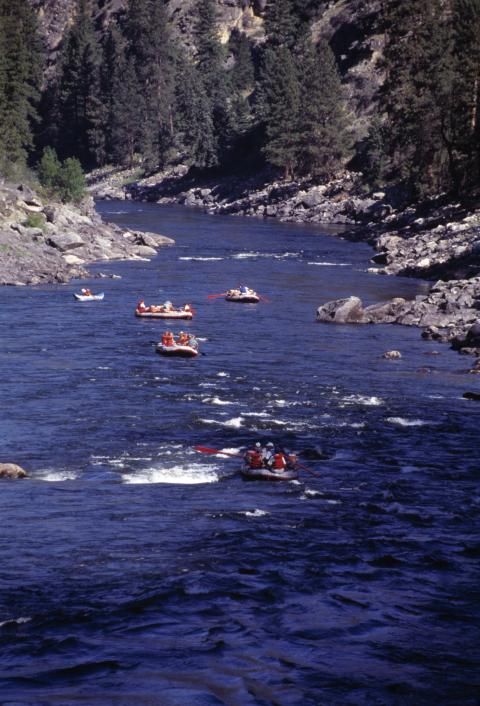 Family River Rafting Trips: Father and Son Trip - Reconnecting on the River