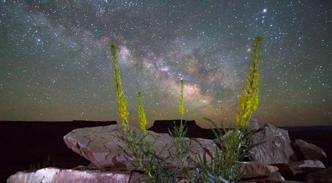 Dark Sky Stargazing trips in Canyonlands National Park