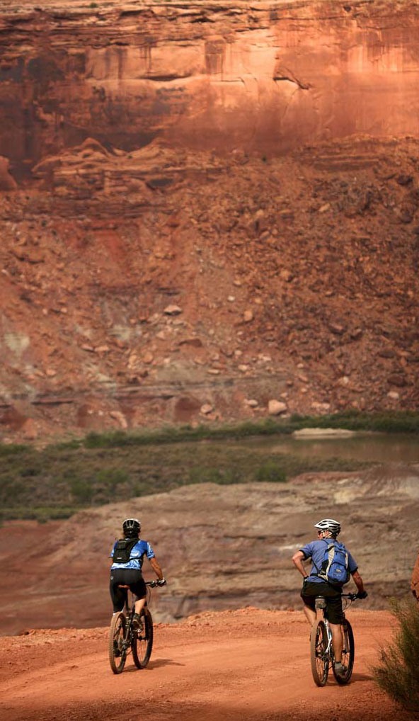 mountain biking trips on the white rim trail
