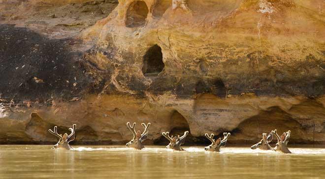 Yampa-River-Rafting