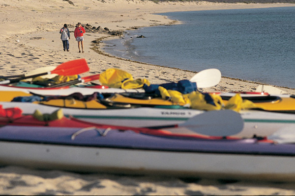 Sea Kayaking Trips in Baja