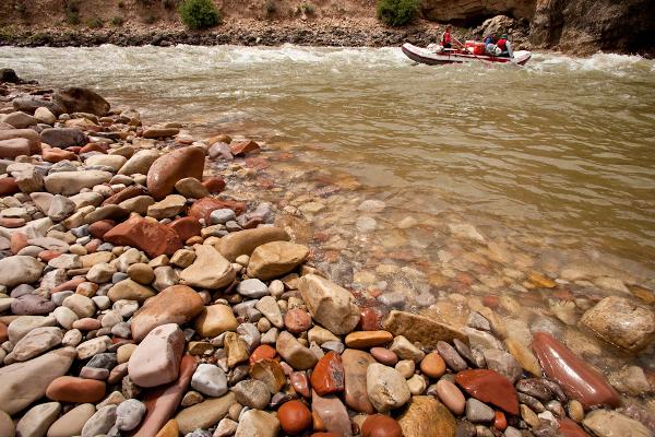 Mindfulness Whitewater Rafting