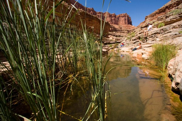 Songwriting Workshop on the Lower San Juan River