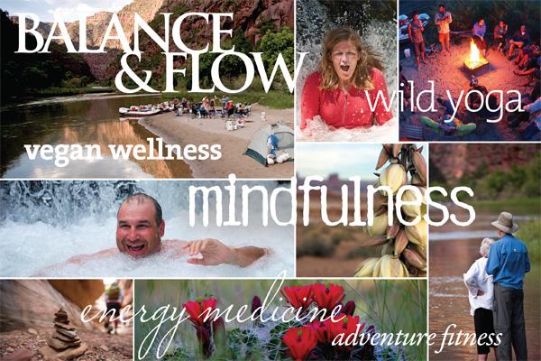 Balance & Flow Trips