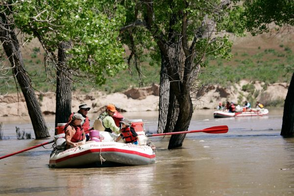 High water Yampa