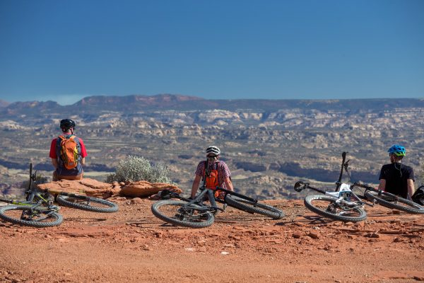 Maze Stargazer Bike Rest