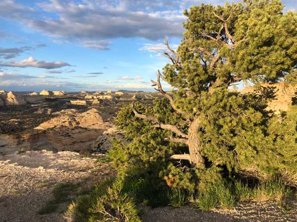 Camping in the San Rafael Swell